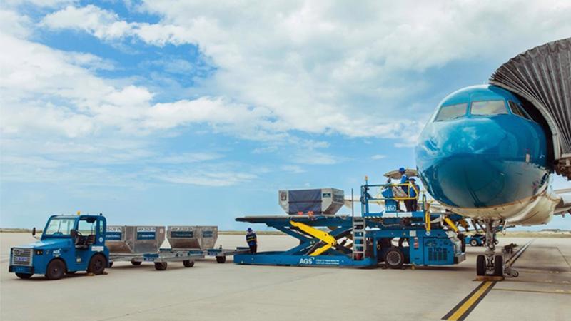 Hiện, Công ty CIAS đang trực tiếp cung cấp các dịch vụ phục vụ hành khách tại Cảng hàng không quốc tế Cam Ranh.