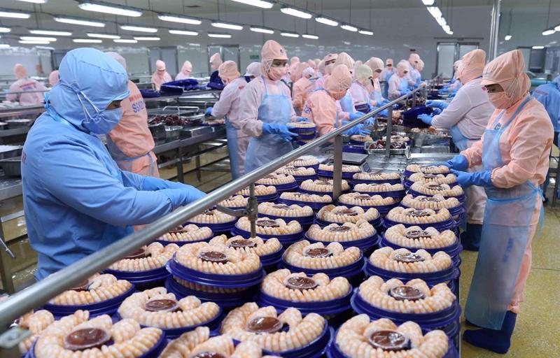 Doanh nghiệp xuất khẩu thủy sản Việt Nam cần thận trọng khi ký kết hợp đồng với doanh nghiệp Ai Cập