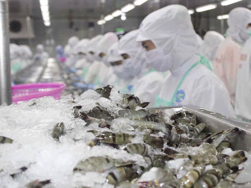 Xuất khẩu thuỷ sản sang Trung Quốc giảm liên tiếp do Covid