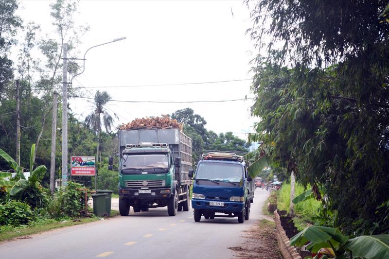 Mặt đường vốn chật hẹp, nhiều đoạn rộng chỉ chừng 3 - 3,5m, tiềm ẩn nguy cơ tai nạn giao thông.