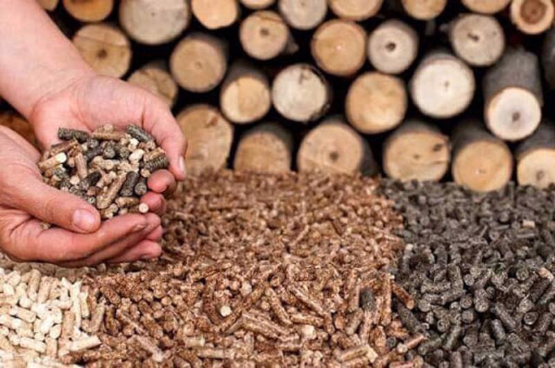 Viên nén có triển vọng trở thành ngành xuất khẩu tỷ USD.