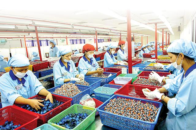 IFC hỗ trợ doanh nghiệp Việt phục hồi chuỗi cung ứng.