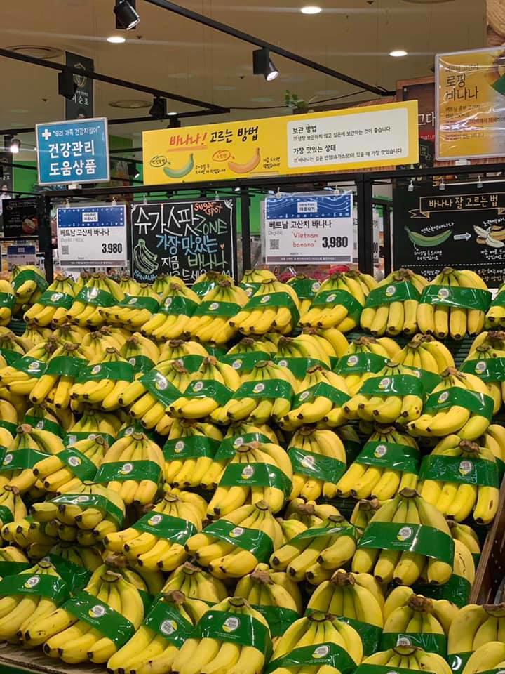 Chuối Việt Nam lần đầu tiên được bày bán tại siêu thị iMart của Hàn Quốc tháng 7/2020.