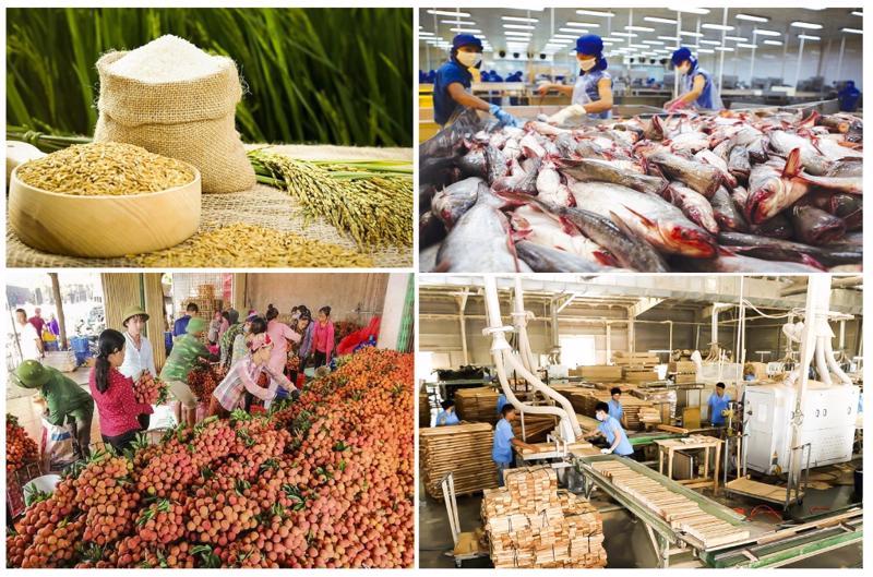Xuất khẩu nông, lâm, thủy sản vẫn tăng trưởng dù còn rất nhiều khó khăn.