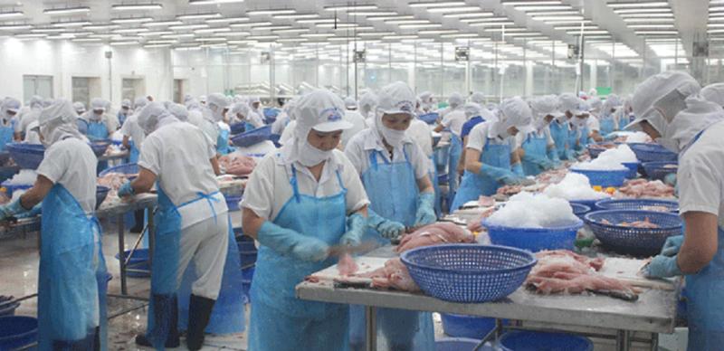 Chế biến gia tăng giá trị cho thủy sản.