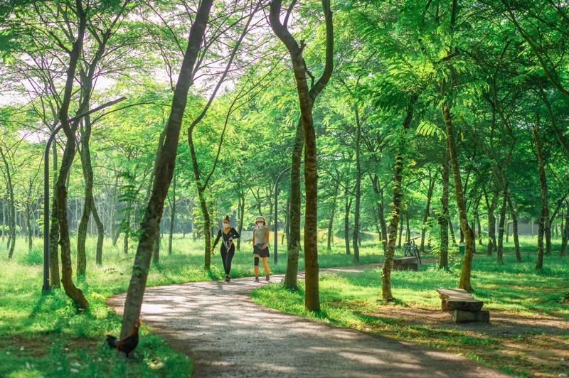 Một cung đường dạo bộ của khu đô thị Ecopark.