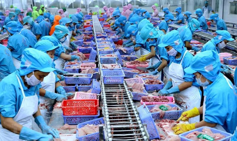 Doanh nghiệp thủy sản, rau quả, xuất khẩu trên 1 tỷ USD được giảm tiền điện đợt 5.