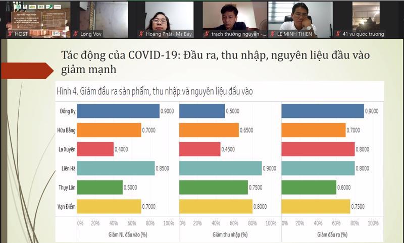 Hội thảo trực tuyến Tác động của dịch Covid-19 tới các hộ làng nghề chế biến gỗ.