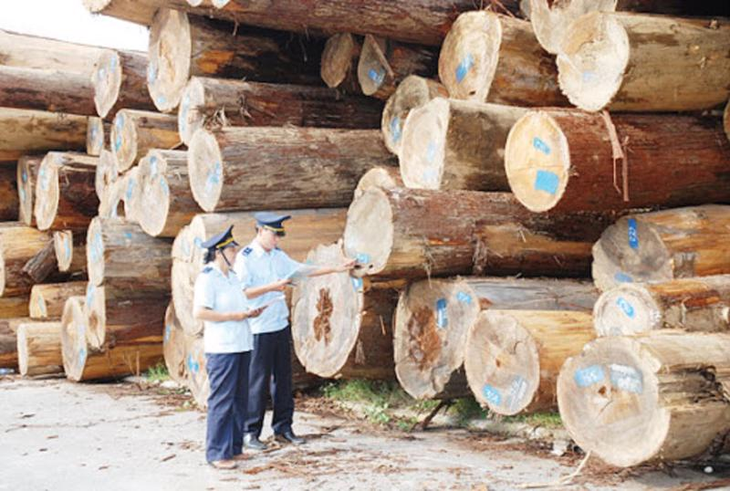Gỗ nguyên liệu nhập khẩu đều phải có xác nhận xuất xứ hợp pháp.