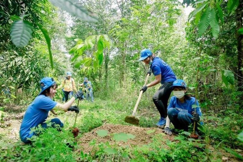 Muốn bảo vệ và phát triển tốt, rừng phải có chủ.
