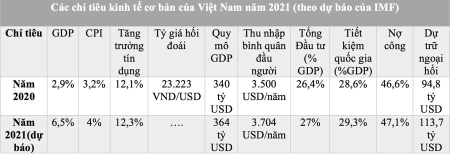 Phục hồi sau dịch, Việt Nam cần tăng cường kinh tế tư nhân và tăng năng suất  - Ảnh 1.