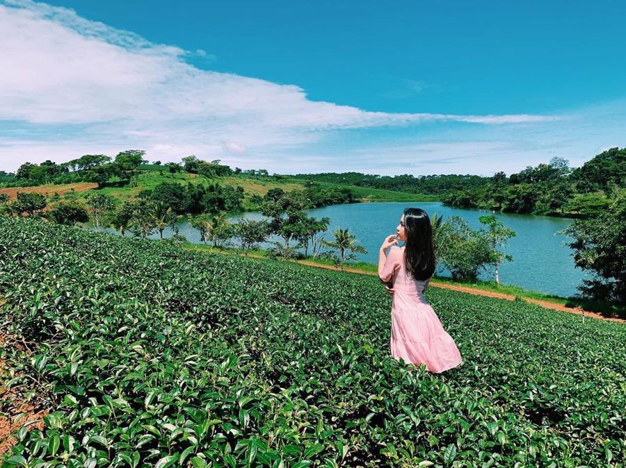 Sau Đà Lạt, bất động sản khu vực nào tại Lâm Đồng sẽ hút nhà đầu tư - Ảnh 1.