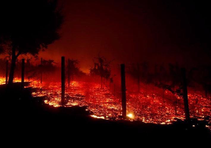 Cận cảnh vụ cháy rừng lịch sử khiến ít nhất 31 người thiệt mạng ở California - Ảnh 12.