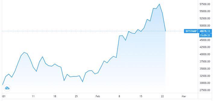 Gặp nhiều cảnh báo, giá Bitcoin lao dốc về dưới 48.000 USD - Ảnh 1.