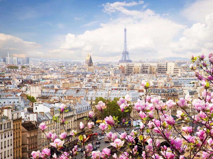 6 France
