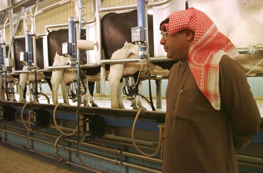 12 điều ít biết về nền kinh tế của Saudi Arabia - Ảnh 8.