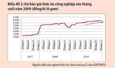 Kịch bản nào cho thị trường thức ăn chăn nuôi 2009? - Ảnh 2
