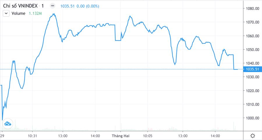 Thiếu tiền đỡ giá T+1, hàng xả dìm cổ phiếu giảm cả loạt - Ảnh 1.