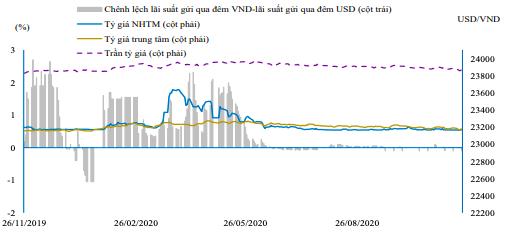 Tỷ giá USD/VND có thể chạm mốc chặn mới trước Tết Nguyên đán - Ảnh 2.
