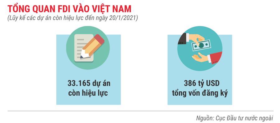 Những điểm nhấn về thu hút FDI trong tháng 1 năm 2021 - Ảnh 7.
