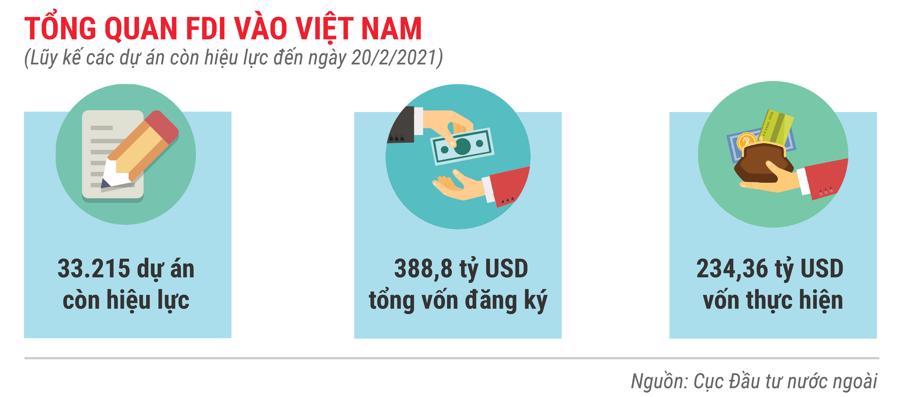 Những điểm nhấn về thu hút FDI trong tháng 2/2021 - Ảnh 7.