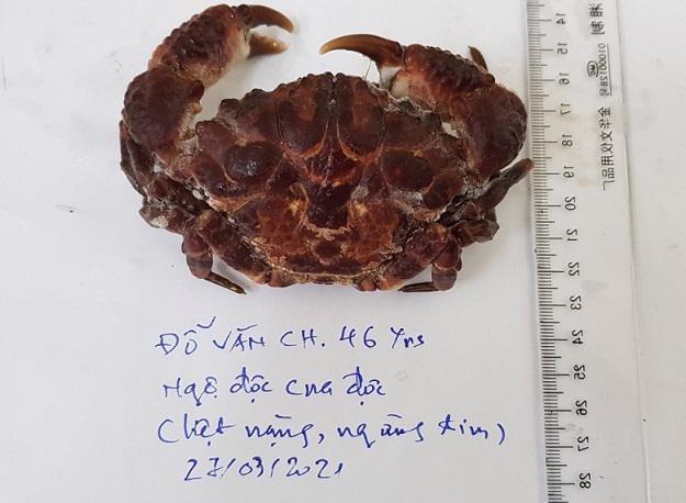 3 loại cua biển có độc tính mạnh, tuyệt đối không nên ăn - Ảnh 1.