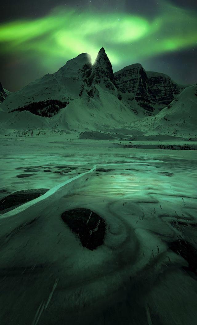 10 bức ảnh tuyệt đẹp về Bắc cực quang sẽ khiến bạn cảm thấy như đang cắm trại dưới các vì sao - Ảnh 10.
