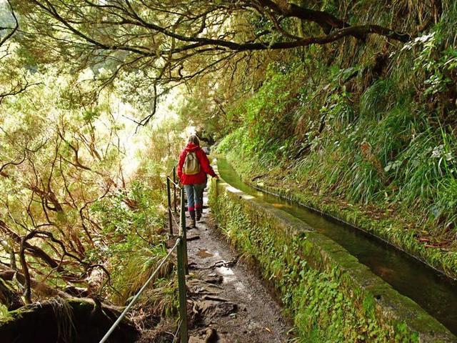Quần đảo Madeira được vinh danh là điểm đến tốt nhất ở châu Âu - Ảnh 11.