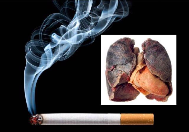 Hút một điếu thuốc giảm đi 6 phút cuộc sống - Ảnh 1.