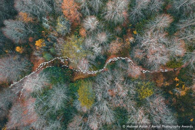 23 bức ảnh chụp từ trên không sẽ đưa bạn đến nhiều nơi trên thế giới - Ảnh 13.