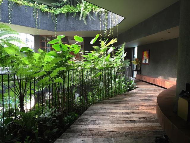 Chiêm ngưỡng biệt thự xanh đáng kinh ngạc ở Singapore - Ảnh 6.