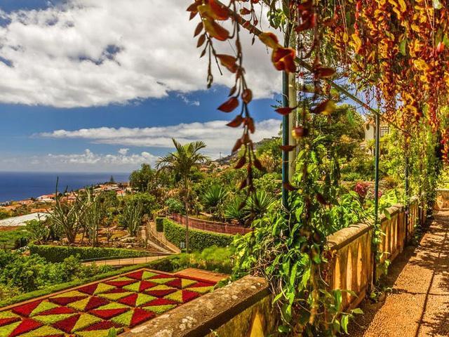 Quần đảo Madeira được vinh danh là điểm đến tốt nhất ở châu Âu - Ảnh 18.