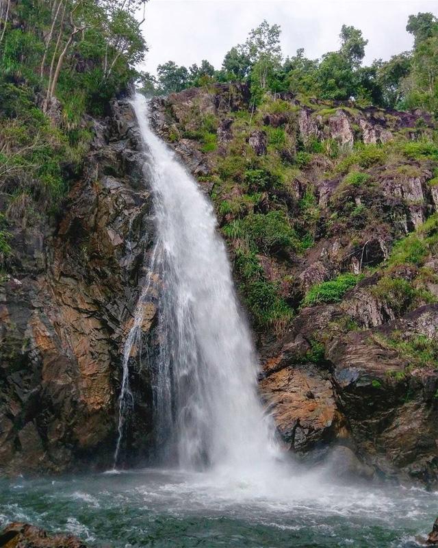 Đến Cam Ranh, nhưng để ngắm… rừng - Ảnh 4.
