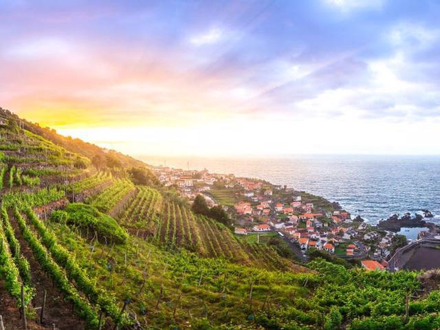 Quần đảo Madeira được vinh danh là điểm đến tốt nhất ở châu Âu - Ảnh 20.
