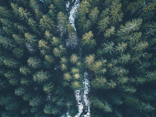 65 bức ảnh ghi lại vẻ đẹp của thế giới từ trên không - Ảnh 22.