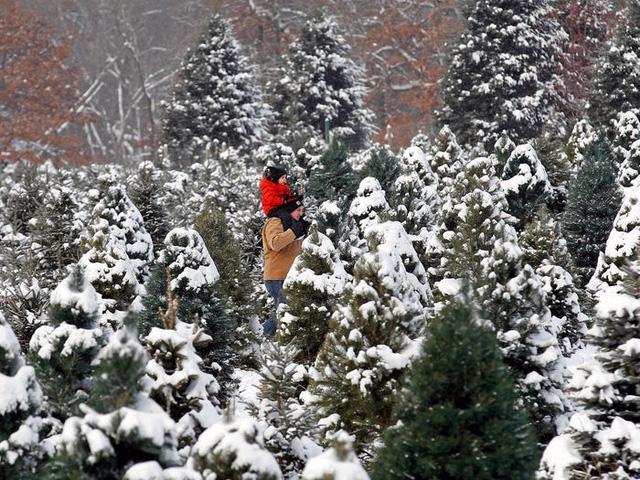 Nước Mỹ: ngắm Giáng sinh muôn màu muôn vẻ - Ảnh 23.