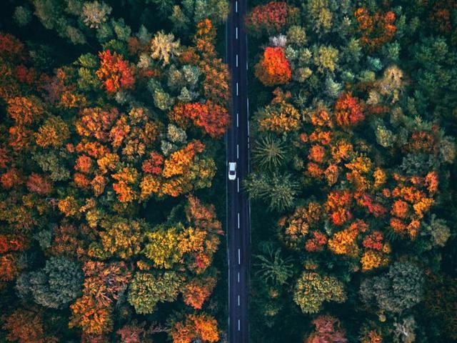 65 bức ảnh ghi lại vẻ đẹp của thế giới từ trên không - Ảnh 27.