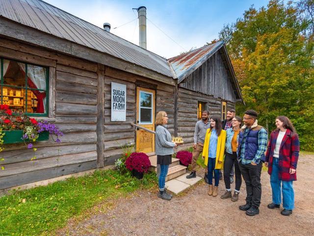 Ghé thăm một trang trại ở Canada để nếm thử xi-rô phong - Ảnh 3.
