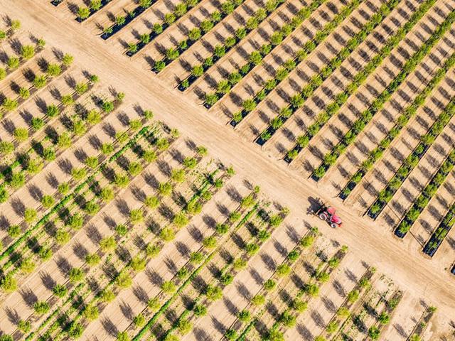 65 bức ảnh ghi lại vẻ đẹp của thế giới từ trên không - Ảnh 43.