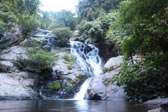 Đến Cam Ranh, nhưng để ngắm… rừng - Ảnh 3.