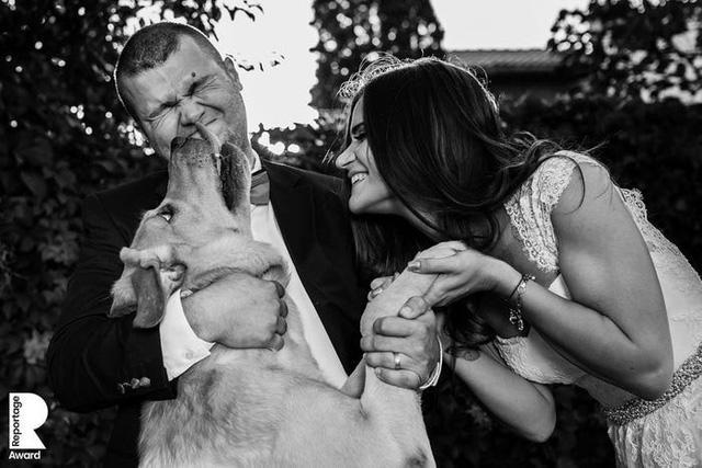Những bức ảnh cưới ấn tượng nhất năm 2020 - Ảnh 6.