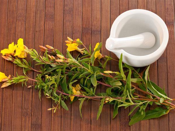 8 biện pháp tự nhiên giúp kiểm soát các triệu chứng bệnh chàm - Ảnh 6.
