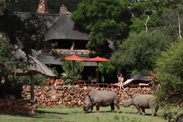 3 khu nghỉ dưỡng safari cho người yêu thiên nhiên - Ảnh 1.