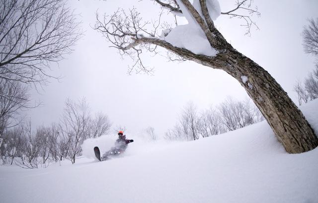 Aomori – thiên đường tuyết của Nhật Bản - Ảnh 12.