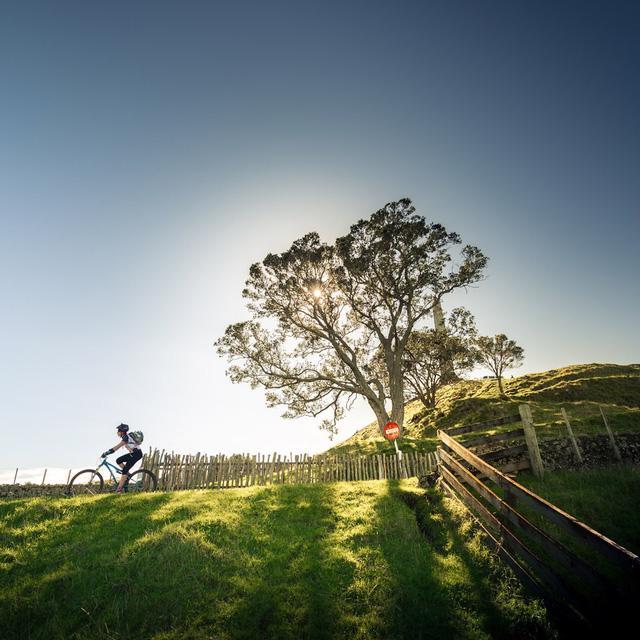 Auckland - thành phố đáng sống thứ 3 trên thế giới - Ảnh 12.