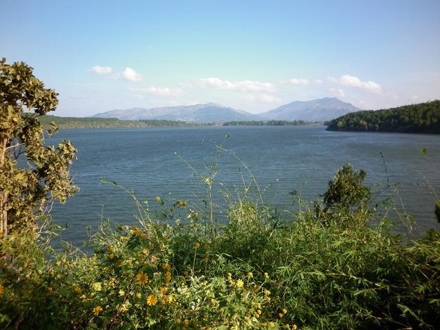 Vẻ đẹp tĩnh lặng xanh biếc của Biển Hồ Pleiku - Ảnh 1.
