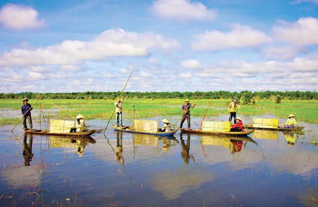Thăm làng bè Châu Đốc mùa nước nổi - Ảnh 6.