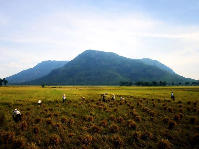 Thăm làng bè Châu Đốc mùa nước nổi - Ảnh 12.