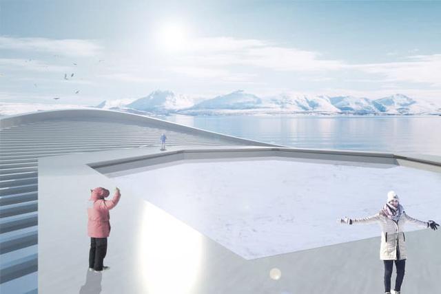 Tạo băng cho Bắc cực: các nhà khoa học vào cuộc - Ảnh 2.