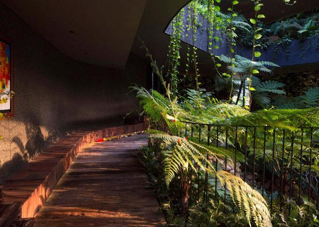Chiêm ngưỡng biệt thự xanh đáng kinh ngạc ở Singapore - Ảnh 11.